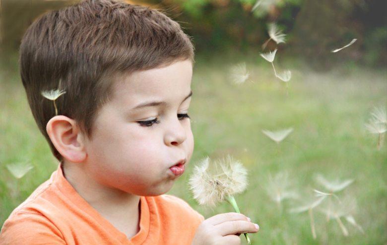 blowing-blurred-background-boy-1231215
